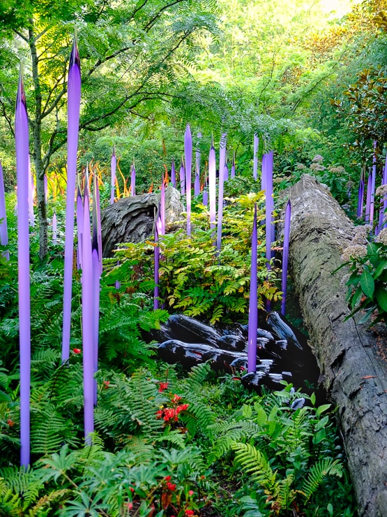 Chihuly-Glass-Garden-Seattle - Adele M. Buttolph Photography