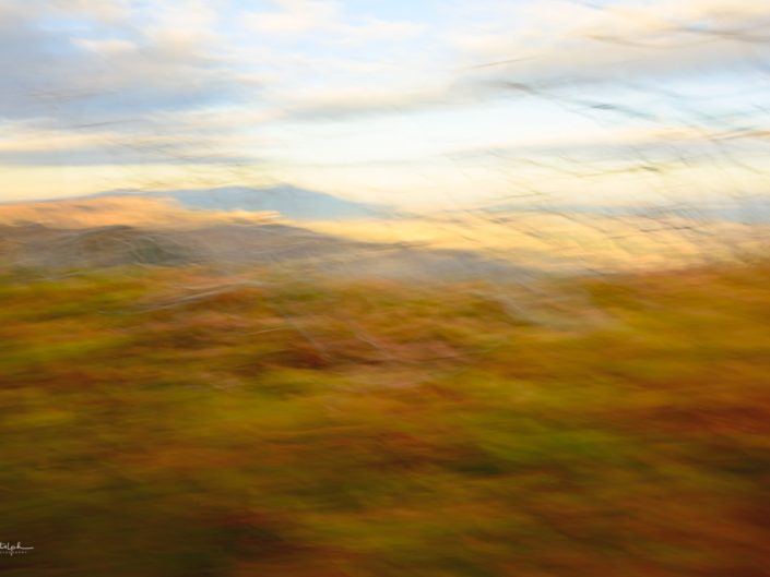 Motion blur image of fall foliage shot at Mesa Verde National Park, Colorado