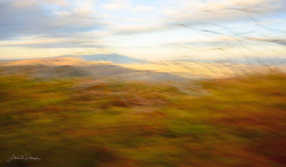 Motion blur image of fall foliage shot at Mesa Verde National Park, Colorado