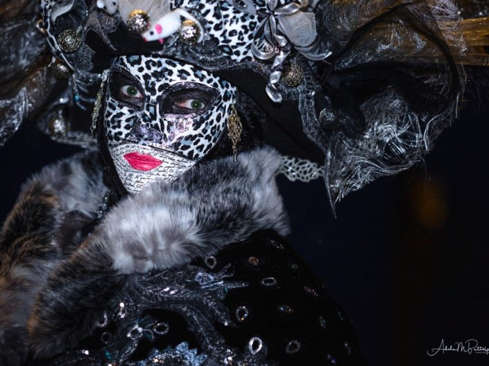 Cat and mouse themed costumer looking into camera. Photographed duing Venice Carnival, Venice, Italy, 2018 at St. Mark's Square.
