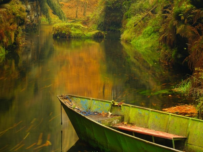 Kamenice River Gorge, Czech Republic